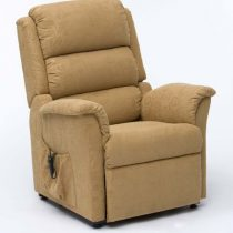 Riser Recline Chair Gold
